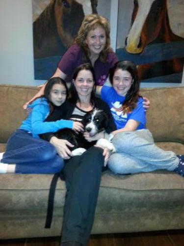 Trained Bernese Mix Before Covid